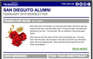 Screenshot of fake site